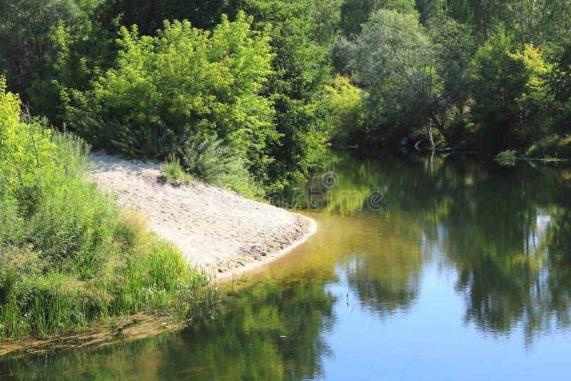Sandy Beach na curvatura do rio claro entre árvores verdes e outras plantas verdes no verão no tempo claro fotografia de stock