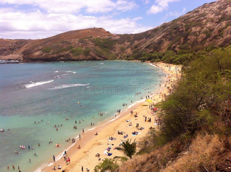 Sandy Beach op de Vreedzame Oceaan met golven die binnen rollen royalty-vrije stock fotografie