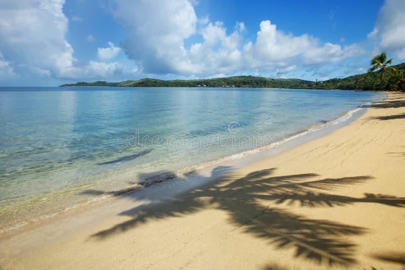 Sandy beach with a shadow of a palm tree, Nananu-i-Ra island, Fiji stock photos