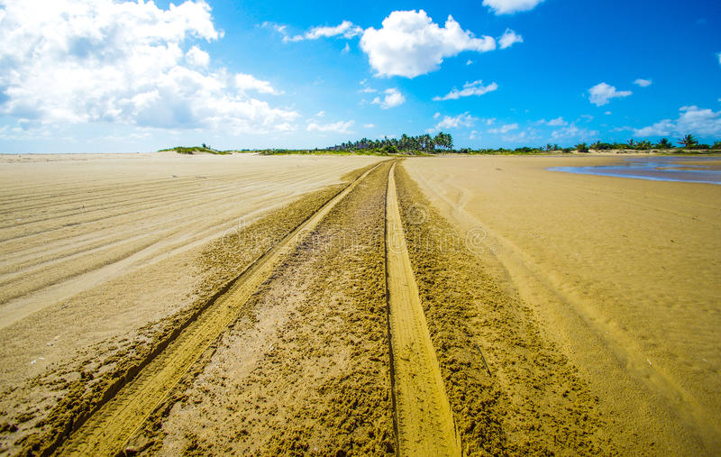Sandy beach with tire tracks stock images