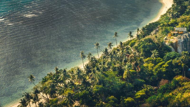 Sandy Beach tropical com palmas e um oceano hous, cinzento durante um dia ventoso, praia de Haad Rin, Koh Phangan, Tailândia fotos de stock