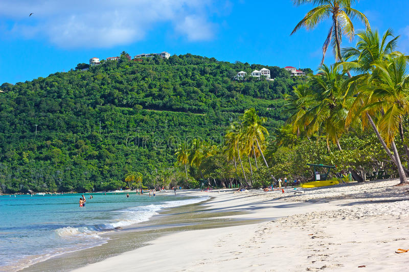 Sandy Beach On A Tropical Island In The Morning. Stock