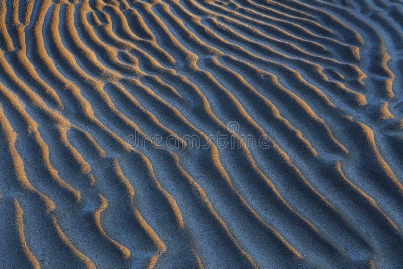 The sandy beaches. stock photo