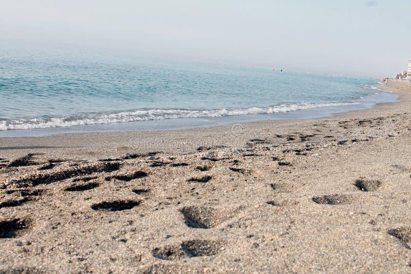Sandy coastline on sunny day stock images