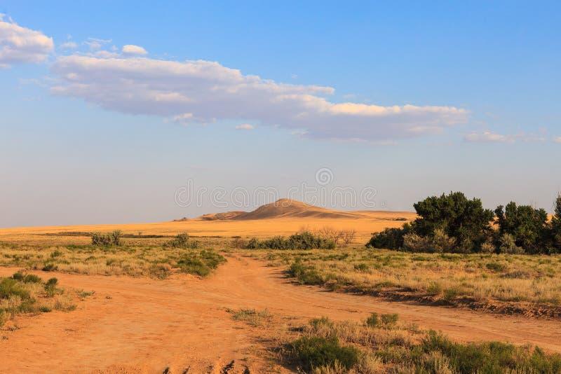 Sandy Country Road In The Salt Desert Landscape On A Hot Summer - A hot desert