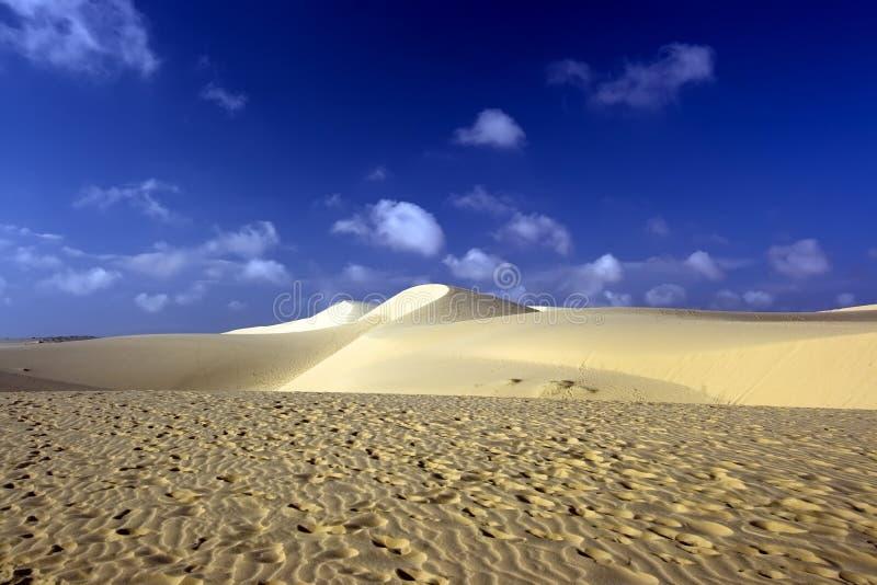 Sandy desert. Footprints on sand. Sandy desert stock photo