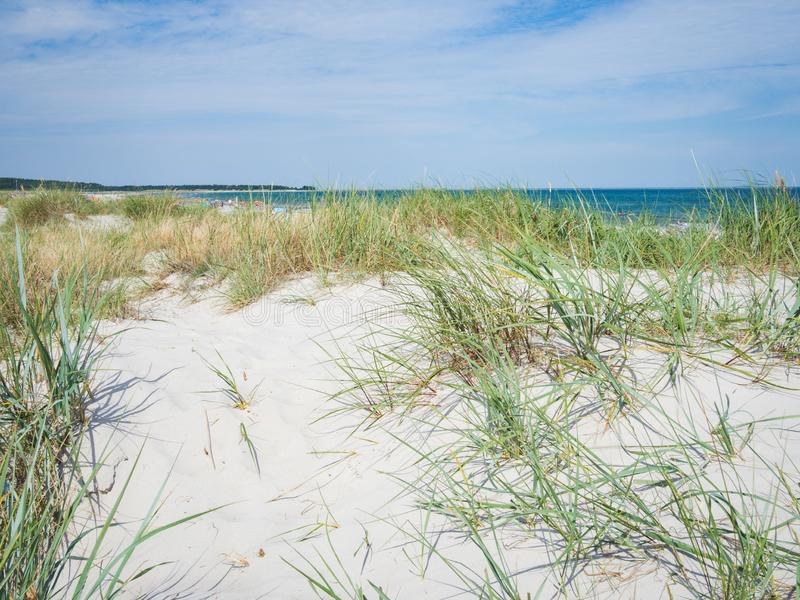 Sandy dunes on a beach of Baltic Sea, Germany royalty free stock photo