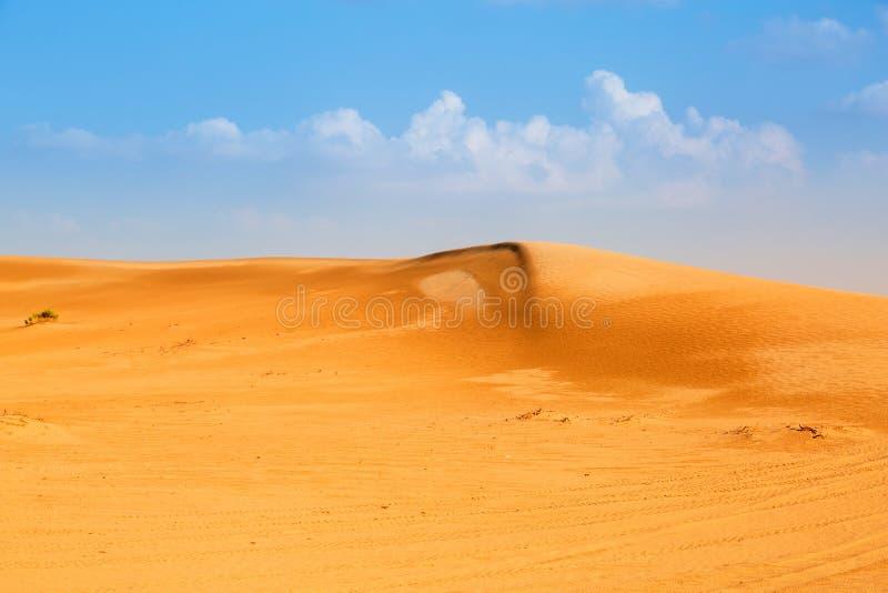Download Sandy Dunes In The Desert Near Abu Dhabi Stock Photo - Image: 40147306