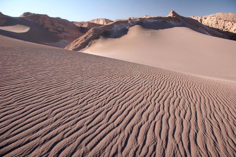Sandy dunes in Valle de la Luna. Late afternoon on a sand dune in desert. Sandy dunes in Valle de la Luna. Chile stock photos