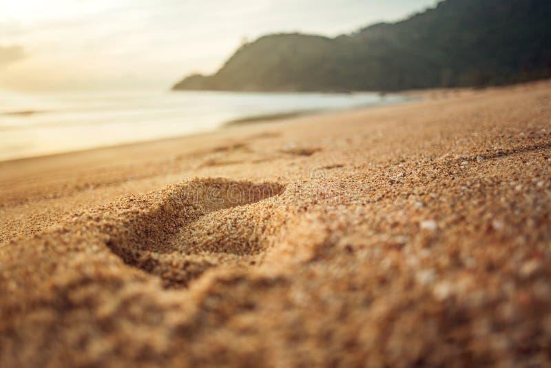 Sandy Footprint At Sunrise photo stock