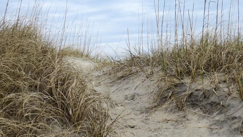 Sandy grass covered pathway on a dune. Sandy pathway on a grass covered dune on a cloudy day royalty free stock image