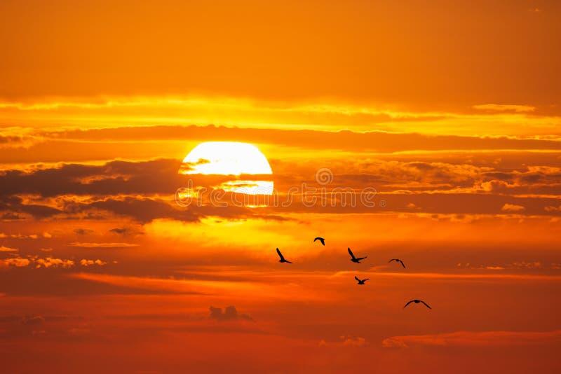 Sandy Hook Bay no por do sol imagens de stock royalty free