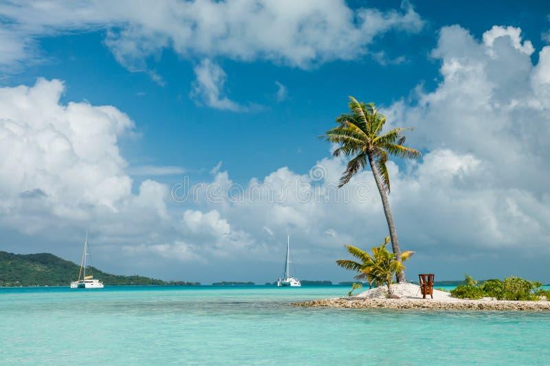 Sandy Island mit einer Palme innerhalb der Lagune stockfotos
