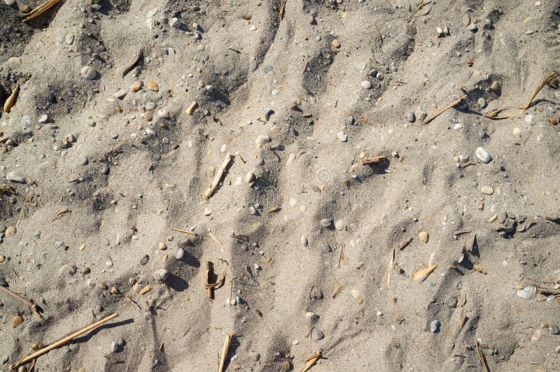Sandy Lakeside pr?s de Neusiedlersee avec de petites roches photographie stock