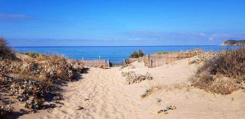 Sandy naar het strand royalty-vrije stock fotografie