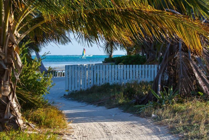 Sandy Path Along la orilla del Caribe imagenes de archivo