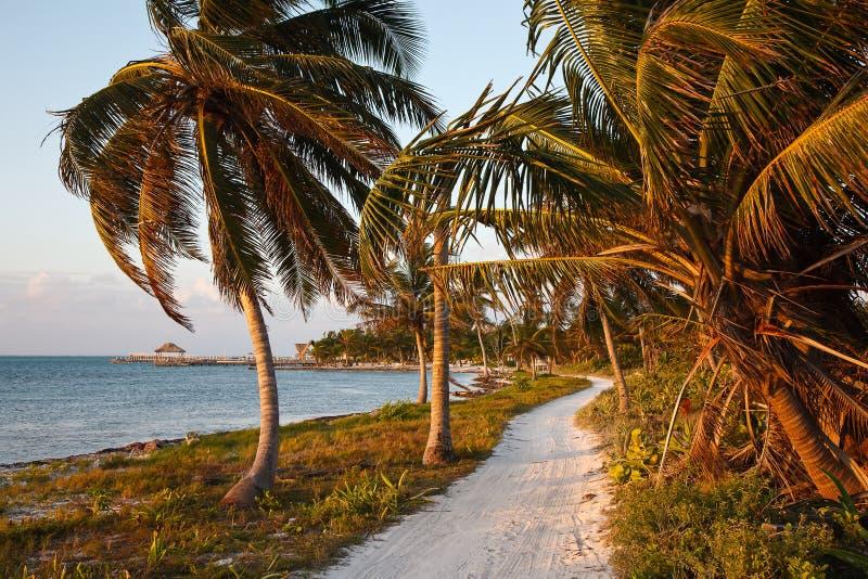 Sandy Path del Caribe imágenes de archivo libres de regalías