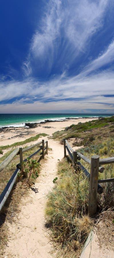 Sandy Path to Bunbury Beach. Vertical panorama of a sandy path on to Bunbury beach, under a wispy blue sky. Bunbury, Western Australia stock image