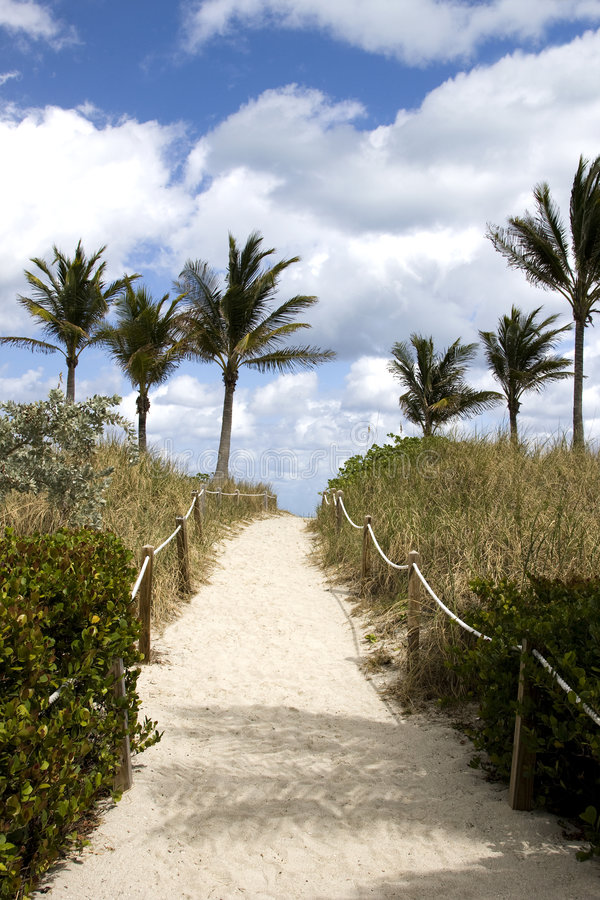 Free Sandy Path To The Beach Royalty Free Stock Image - 9195396