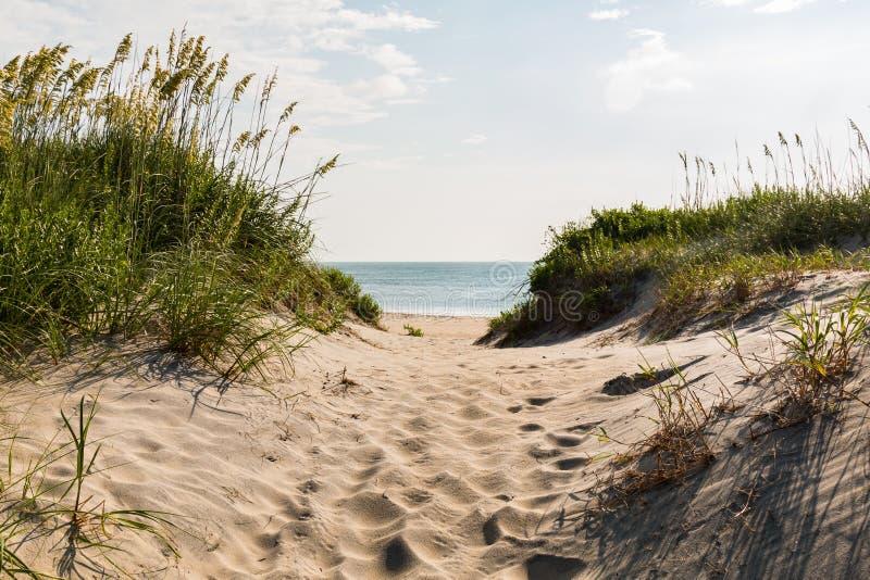 Sandy Pathway à la plage de Coquina à la tête de petits chevaux, la Caroline du Nord photos libres de droits