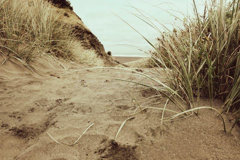 Sandy Pathway mène au-dessus d'une colline et avale la plage photographie stock