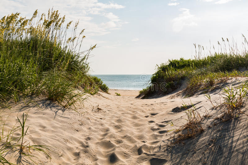Sandy Pathway till den Coquina stranden på hästkrakehuvudet, North Carolina royaltyfria foton