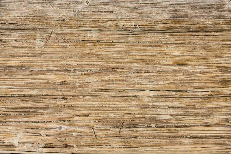 Download Sandy Planks De Madera Gastado Imagen de archivo - Imagen de tarjeta, textura: 42438037