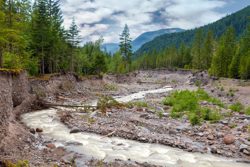Sandy River in Onderstel Hood National Forest stock foto