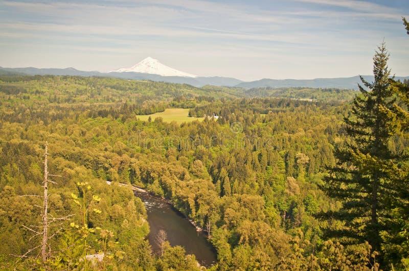 A Sandy River Valley Oregon imagem de stock