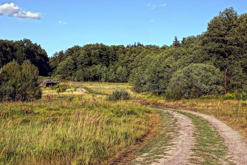 Sandy road in the meadow in front of the edge of the green forest. Summer landscape with a rural road in the grass at the edge of the forest royalty free stock photos