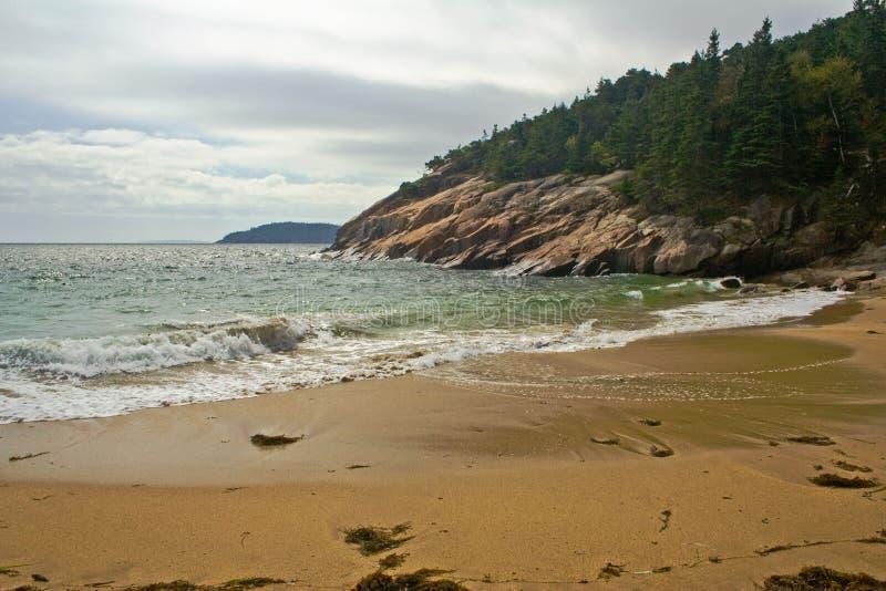 Download Sandy rocky beach stock image. Image of shoreline, acadia - 34116543