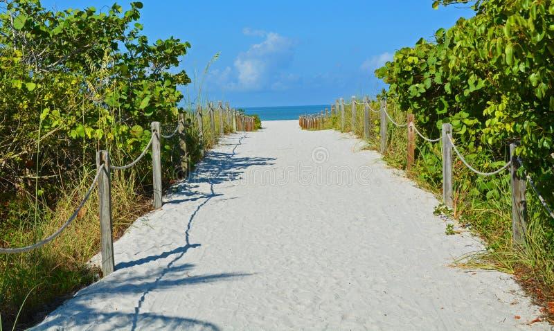 Sandy Roped Path a un mar azul en la playa fotos de archivo