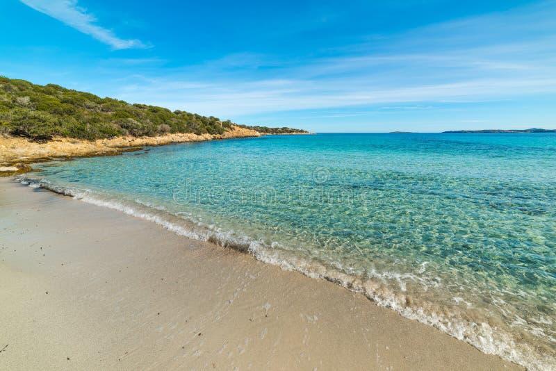 Sandy shore in Andreani cove. Sardinia royalty free stock image