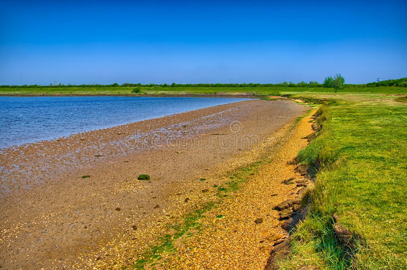 Sandy shore with green grass on sunny day, Holland royalty free stock image