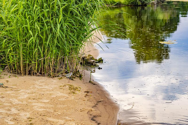 The sandy shore of the river with the reflection of the sky in the water stock photos