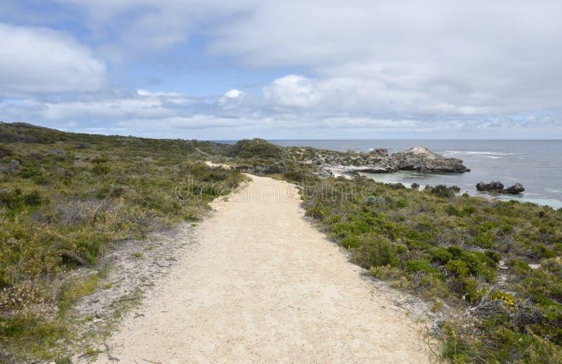 Sandy Shoreline Path imagens de stock royalty free