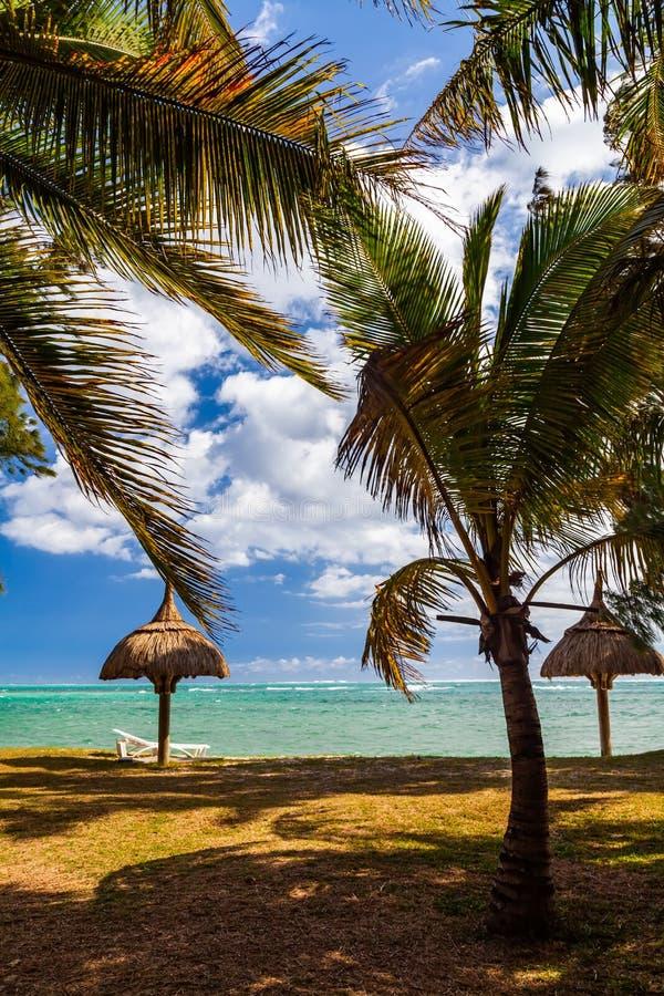 Sandy-Strand mit Palmen, Sonnenbetten und Regenschirmen wiedervereinigung stockfotos