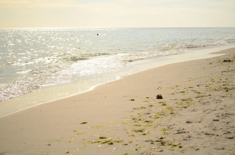 Sandy-Strand am Sonnenuntergang lizenzfreie stockfotos