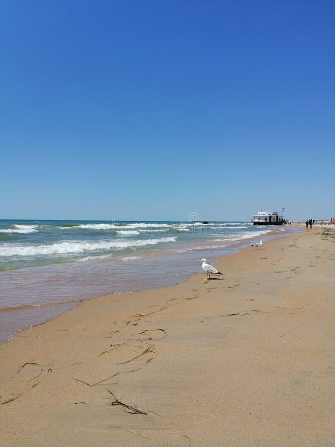 Sandy-Strand, Wellen, Seemöwen, im Abstand das Gebäude lizenzfreies stockfoto