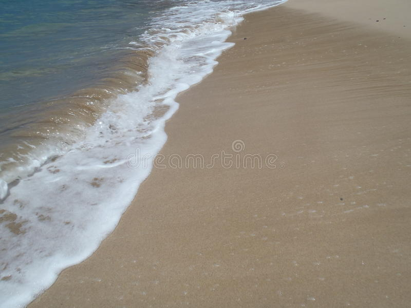 Sandy strzał zdjęcie stock
