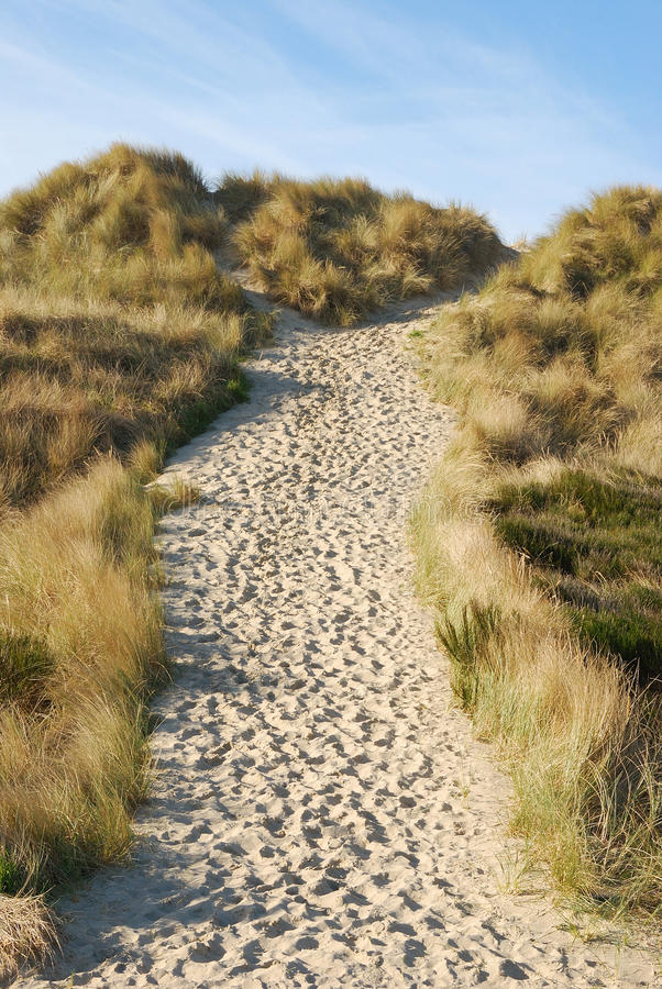 Sandy Trail