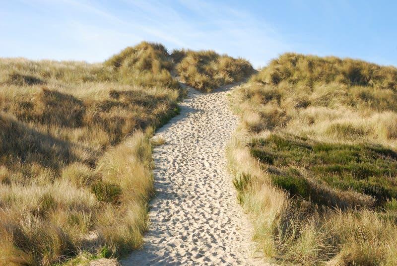 Sandy Trail Stock Image