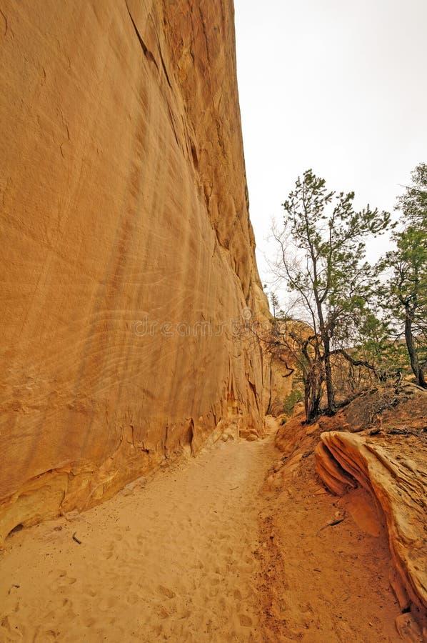 Sandy Trail ao longo de uma parede de garganta vermelha da rocha imagem de stock royalty free
