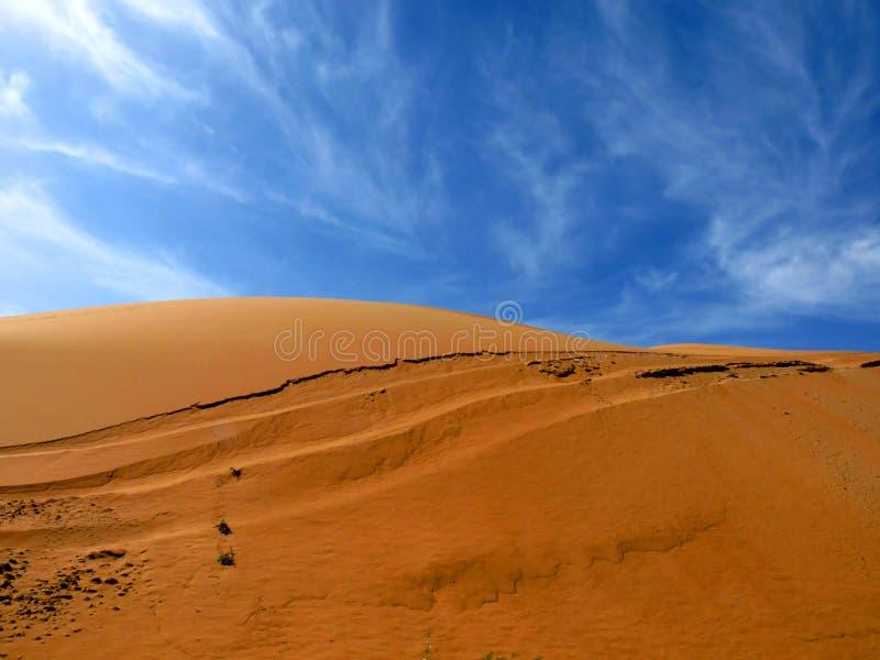 Sandy-Wüsten-Dünen stockfotos