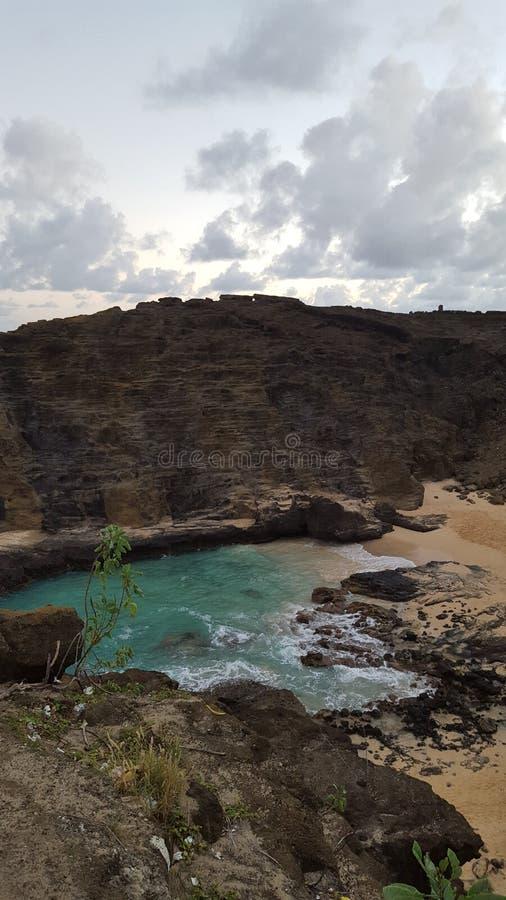 Download Sandys arkivfoto. Bild av hawaii - 78726838