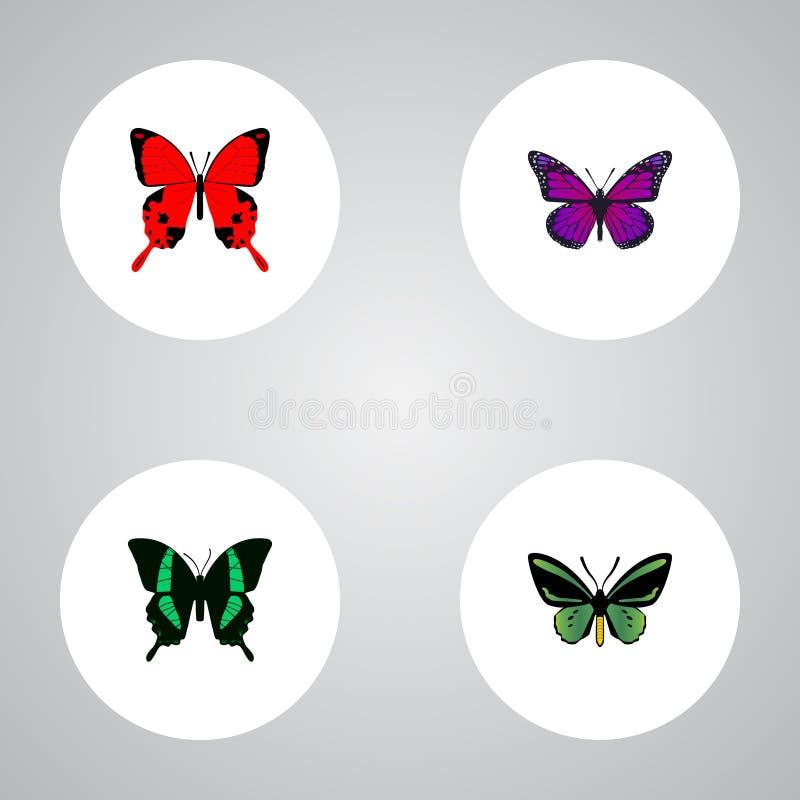 Sangaris realista, mosca de la belleza, polilla tropical y otros elementos del vector El sistema de símbolos realistas de la poli libre illustration