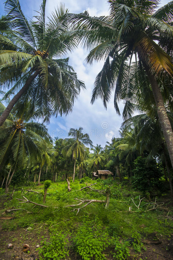 Sangiang Island, Banten. Indonesia royalty free stock image