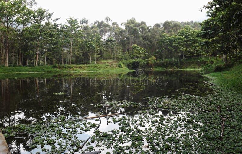 sangkuriang de situ image libre de droits