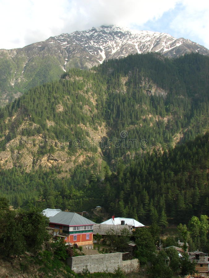 Sangla dal i Himachal Pradesh arkivbilder