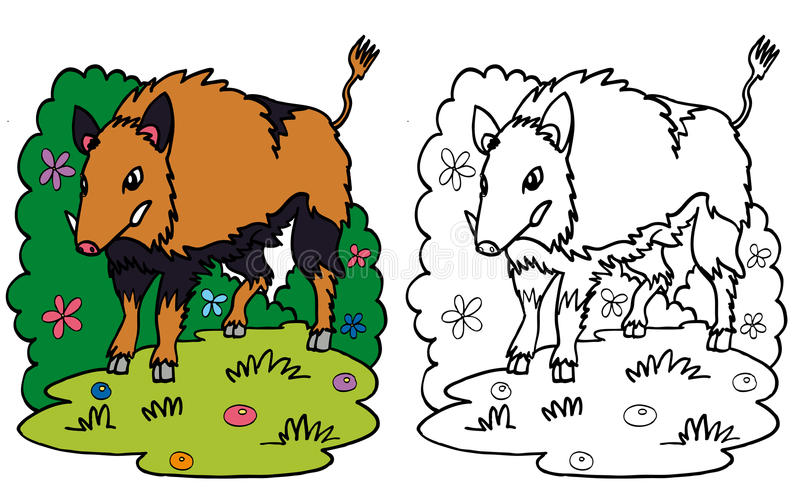 Sanglier se tenant dans l'herbe illustration stock
